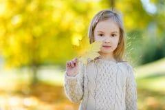 Niña adorable que se divierte el día del otoño Fotos de archivo libres de regalías