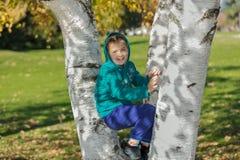 Niña alegre sonriente que se sienta entre los árboles de abedul en parque Imágenes de archivo libres de regalías