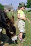 Niña con el burro Imagen de archivo