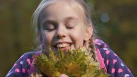 Niña con las coletas que huelen el ramo de hojas de otoño, felicidad de los niños almacen de metraje de vídeo
