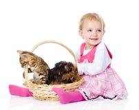 Niña con un gato y un perro En el fondo blanco Imagen de archivo