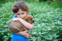 Niña con un perrito en sus brazos Fotos de archivo libres de regalías