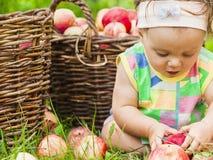 Niña con una cesta de manzanas rojas fotos de archivo libres de regalías