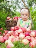 Niña con una cesta de manzanas rojas imagen de archivo libre de regalías
