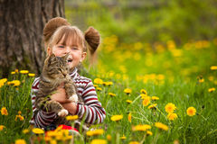 Niña divertida que juega con un gato Fotos de archivo libres de regalías