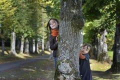 Niña dos que mira de detrás un árbol Fotografía de archivo