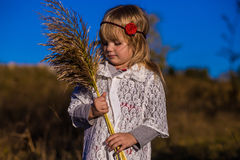 Niña en campo con las cañas imagen de archivo