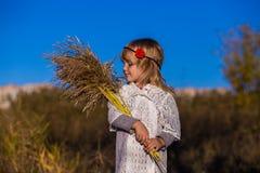 Niña en campo con las cañas Imagenes de archivo