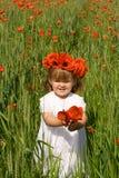 Niña en el campo de trigo verde con las amapolas Fotos de archivo libres de regalías