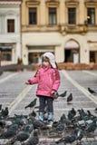 Niña en palomas de alimentación de un cuadrado de ciudad Fotos de archivo