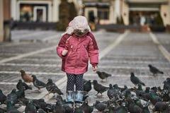 Niña en palomas de alimentación de un cuadrado de ciudad Imagen de archivo libre de regalías
