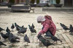 Niña en palomas de alimentación de un cuadrado de ciudad Foto de archivo libre de regalías