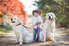 Niña en perros hermosos que caminan del parque del otoño Foto de archivo