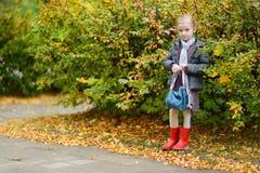 Niña en su manera a la escuela el día del otoño Foto de archivo