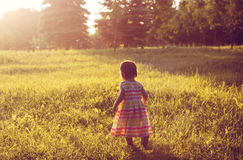 Niña en un campo amarillo del verano Imagenes de archivo