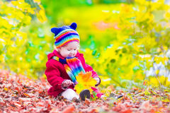 Niña en un parque del otoño Fotos de archivo libres de regalías