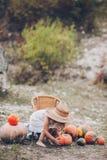 Niña encantadora en un sombrero de paja, calabazas Foto de archivo