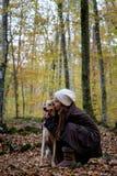 Niña feliz con un perro en un bosque de la haya Fotos de archivo libres de regalías
