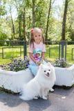 Niña hermosa que se sienta en banco en parque con su perro blanco adorable de Pomeranian fotografía de archivo
