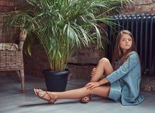 Niña linda con el pelo marrón largo que lleva un vestido elegante, sentándose en un piso de madera en un cuarto con un interior d Fotos de archivo libres de regalías