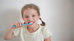 Niña linda con las coletas que cepillan diligente sus dientes En la mano de la muchacha tiene cepillo de dientes azul alegre metrajes