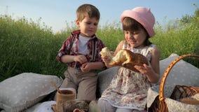Niña linda que comparte el pan con el muchacho, el hermano feliz y la hermana divirtiéndose que juega en el aire fresco, comida s almacen de video