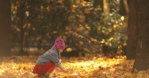 Niña linda que juega con las hojas en bosque otoñal metrajes