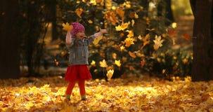 Niña linda que juega con las hojas en bosque otoñal almacen de video