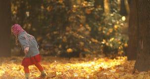 Niña linda que juega con las hojas en bosque otoñal almacen de metraje de vídeo
