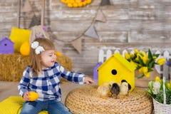 Niña linda que lleva los vaqueros rústicos que juegan escondite con un pollo que se sienta en un pajar El concepto de niños con foto de archivo libre de regalías