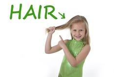 Niña linda que tira del pelo rubio en las partes del cuerpo que aprenden palabras inglesas en la escuela Foto de archivo libre de regalías