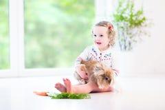 Niña pequeña adorable que juega con un conejito real Imágenes de archivo libres de regalías