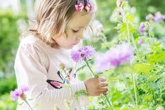 Niña pequeña bonita que huele una flor fotos de archivo libres de regalías
