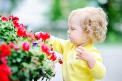 Niña pequeña divertida del pelo rizado que huele las flores rojas Fotos de archivo libres de regalías