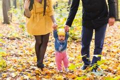 Niña pequeña que lleva a cabo las manos con su madre y padre afuera en un día de la caída Fotos de archivo libres de regalías
