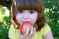 Niña que come la manzana Imagen de archivo libre de regalías