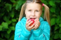 Niña que come una manzana en un banco de madera el día del otoño Fotos de archivo libres de regalías