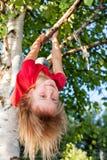 Niña que cuelga de un árbol que juega en un jardín del verano - concepto aventurado del juego del niño imagen de archivo
