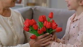 Niña que da los tulipanes a la abuelita de amor, enhorabuena el días de fiesta de la primavera almacen de metraje de vídeo