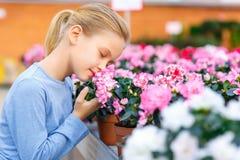 Niña que inhala olor de la flor Foto de archivo
