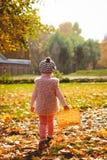 Niña que juega con las hojas de otoño Imagen de archivo