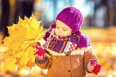 Niña que juega con las hojas de otoño Fotografía de archivo