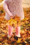 Niña que juega con las hojas de otoño en el parque Foto de archivo libre de regalías