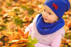 Niña que juega con las hojas de otoño en el parque Imagen de archivo libre de regalías