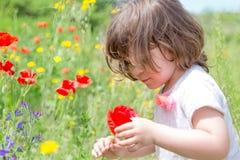 Niña que juega en el prado verde que examina una flor Imagenes de archivo