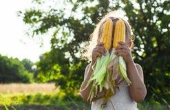Niña que juega en un campo de maíz el otoño Niño que sostiene una mazorca del maíz Cosecha con los niños Actividades del otoño pa imagenes de archivo