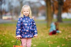 Niña que recolecta las bellotas para hacer a mano y jugar en día hermoso del otoño foto de archivo libre de regalías