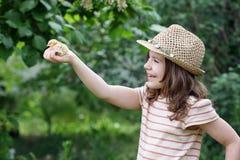 Niña que sostiene el pollo amarillo lindo Imagen de archivo