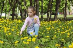 Niña y dientes de león amarillos Gente, niños, concepto de la niñez foto de archivo libre de regalías