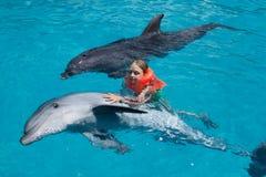 Niña y dos delfínes en piscina Foto de archivo libre de regalías